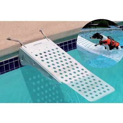 Rampe de piscine pour chien construction piscin ale for Piscine pour chien